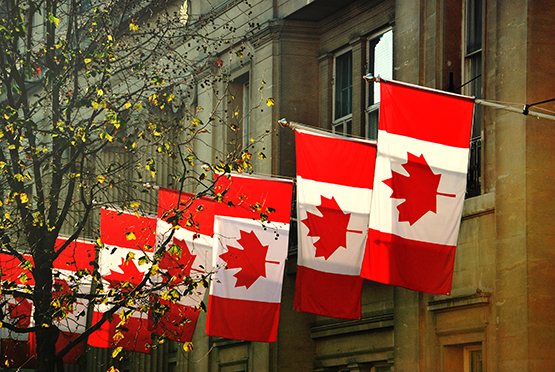 canadian-flags-in-a-row