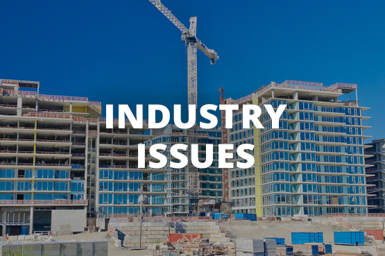 Housing Industry Issues